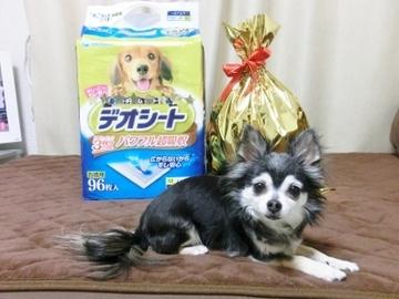ドナ誕生日会8.jpg