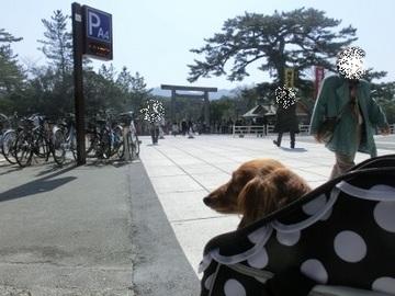伊勢志摩旅行④5.jpg