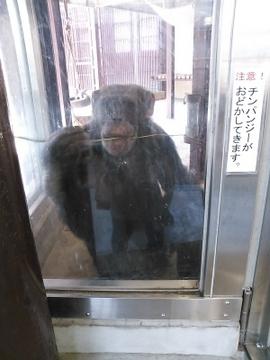 動物園16.jpg