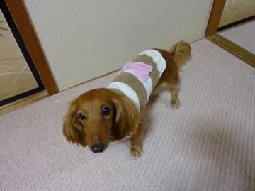 手編みのセーター2.jpg