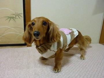 手編みのセーター3.jpg
