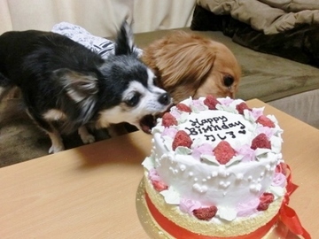 誕生日パーティー8.jpg